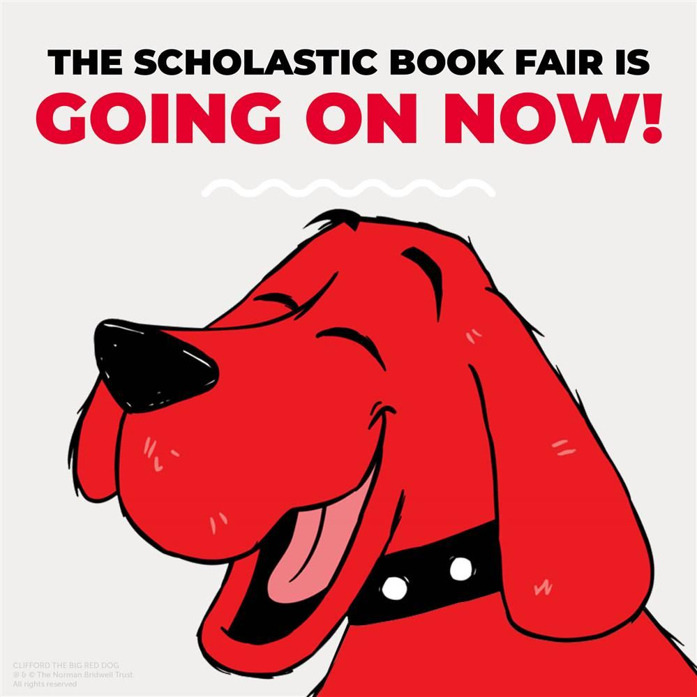 Scholastic Book Fair Going on Now
