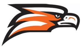 Falcon Head Logo