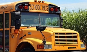 photo of school bus