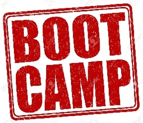 AP Summer Boot Camp