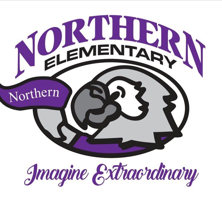 Northern Nighthawks logo