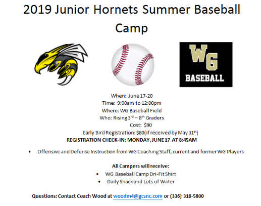 Baseball Summer camp June 17th to 20th
