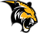 wgms tiger black and gold