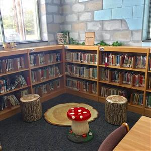 bookcases with wood rug and log and mushroom seating