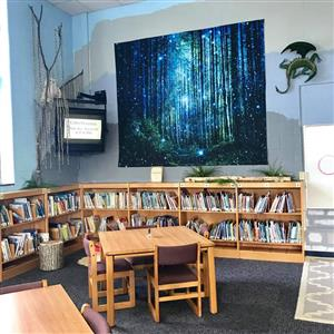 bookshelves and desks next to television and forest tapestry