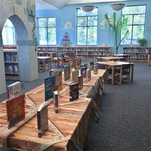 castle arches, windows, bookshelves, and library tables with books