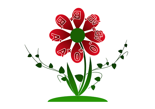 Flower Illustration with blood types listed on the petals