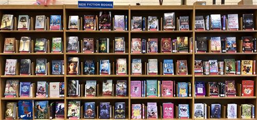 New Fiction Books Displayed on Library Shelves