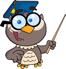 an owl with a graduation cap and a pointer