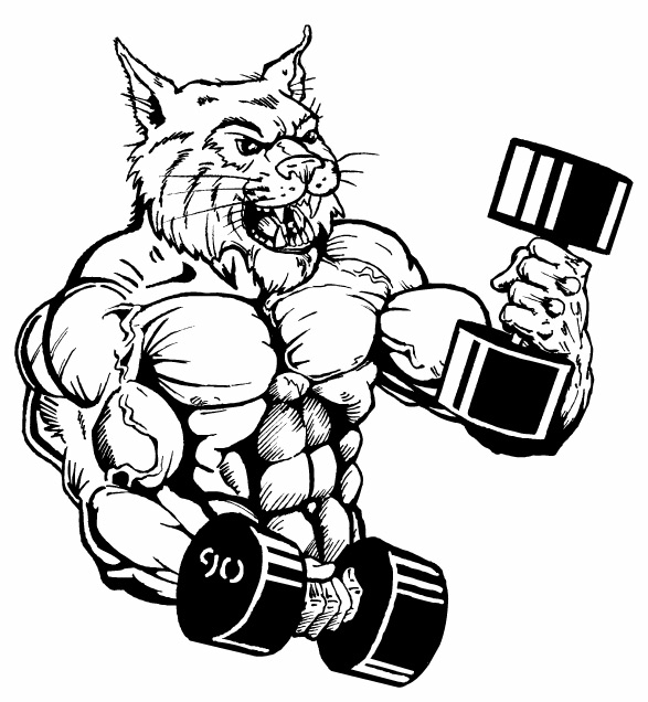 Wildcats Weight Training