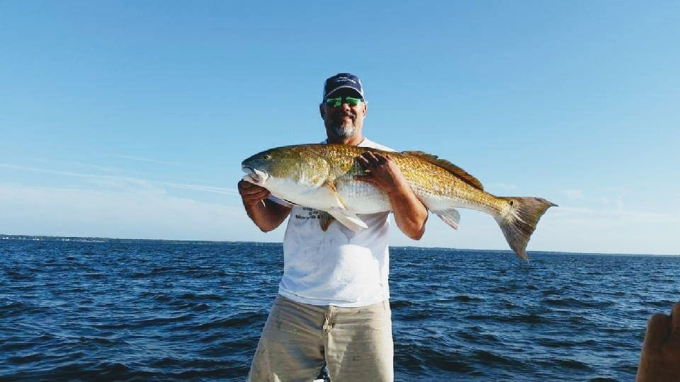Picture of Citation Red Drum